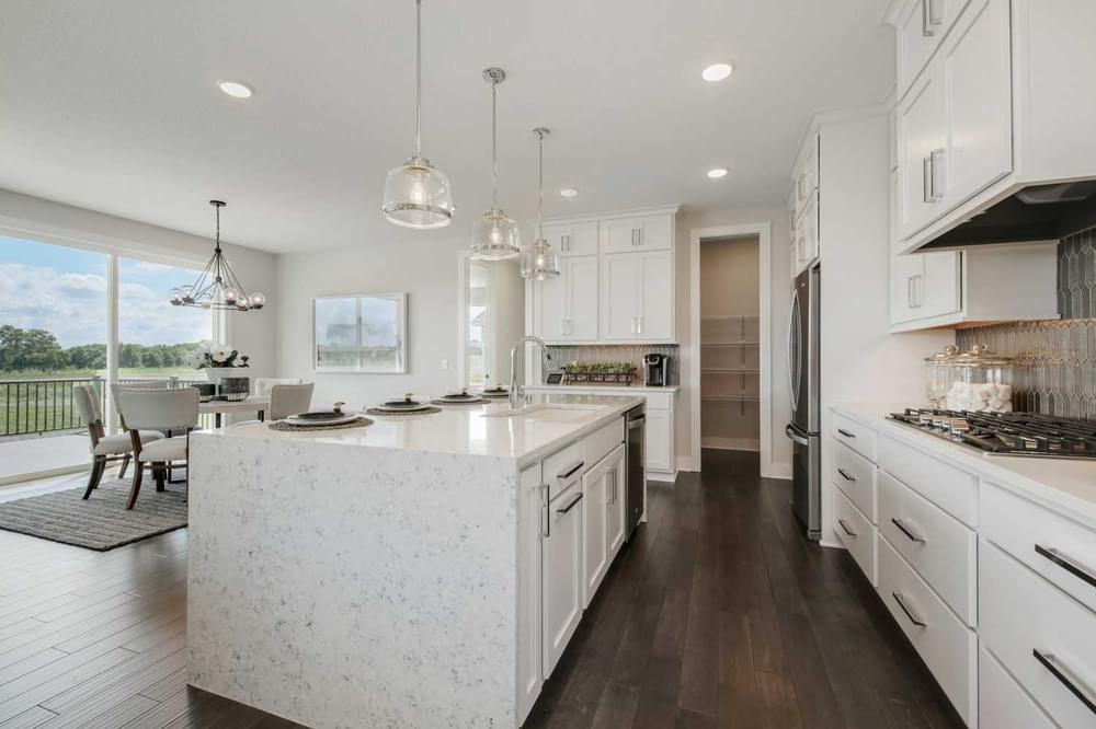 2,686sf New Home in Blaine, MN