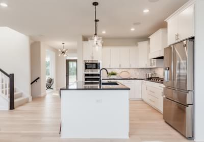 5br New Home in Blaine, MN