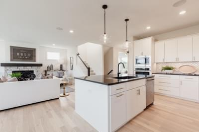 3,305sf New Home in Blaine, MN