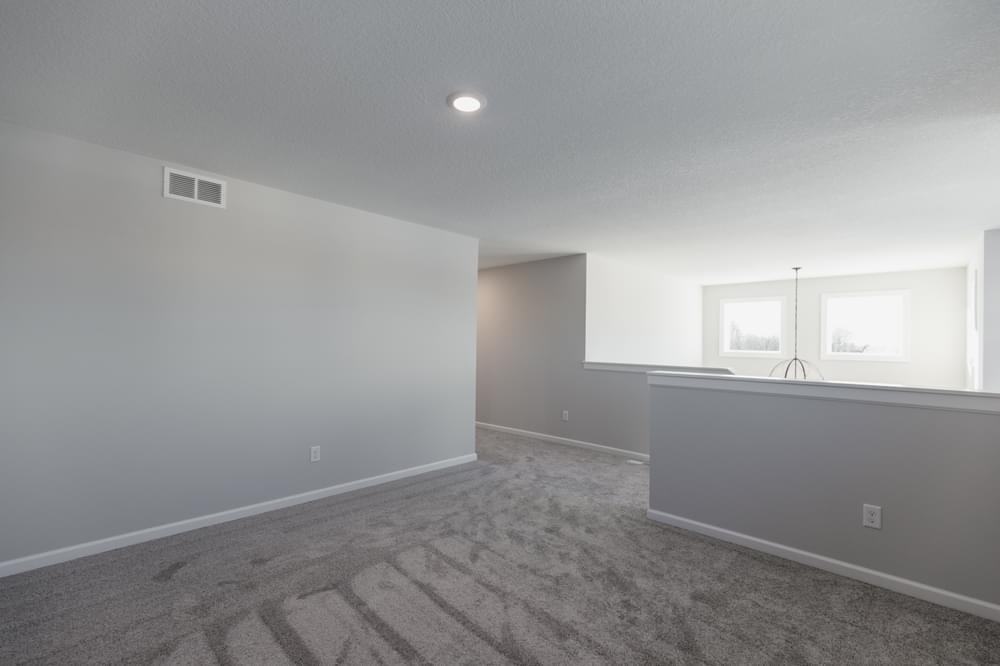 4br New Home in Hugo, MN